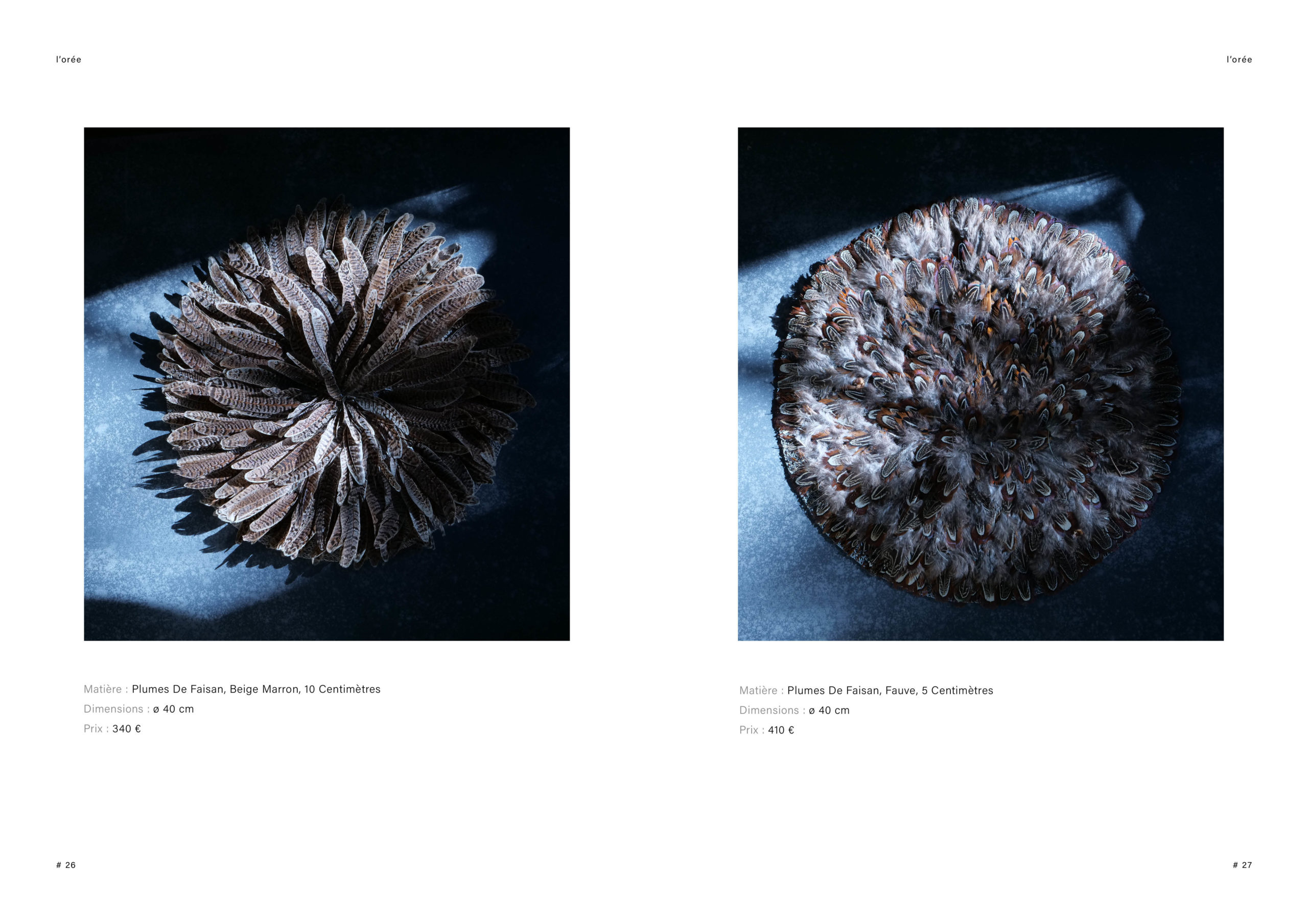 Catalogue creation_WEB14