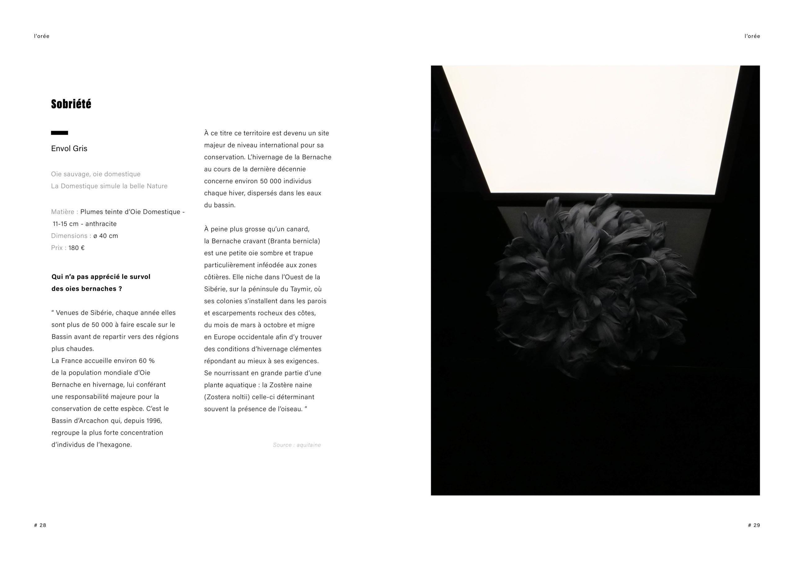 Catalogue creation_WEB15