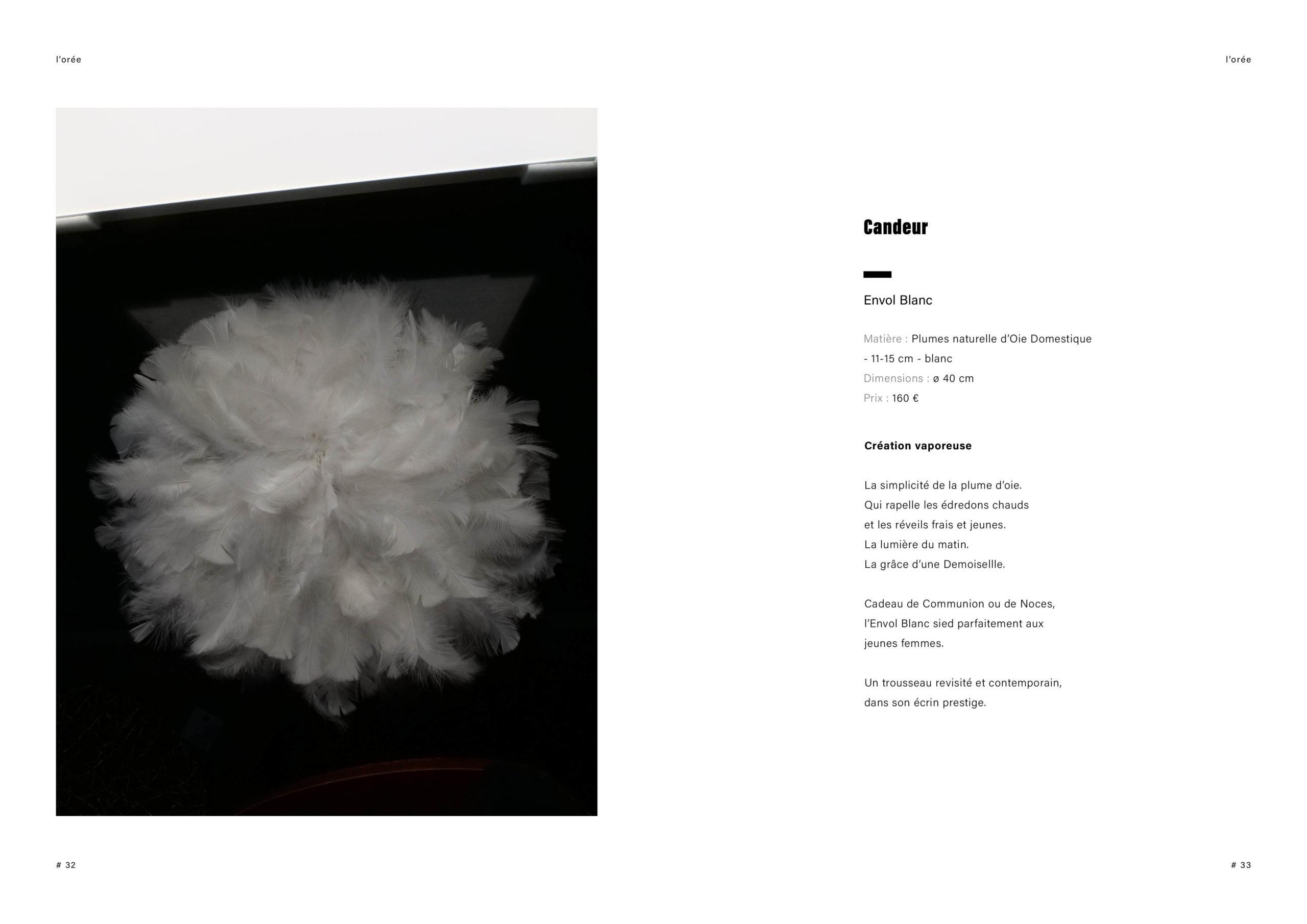 Catalogue creation_WEB17