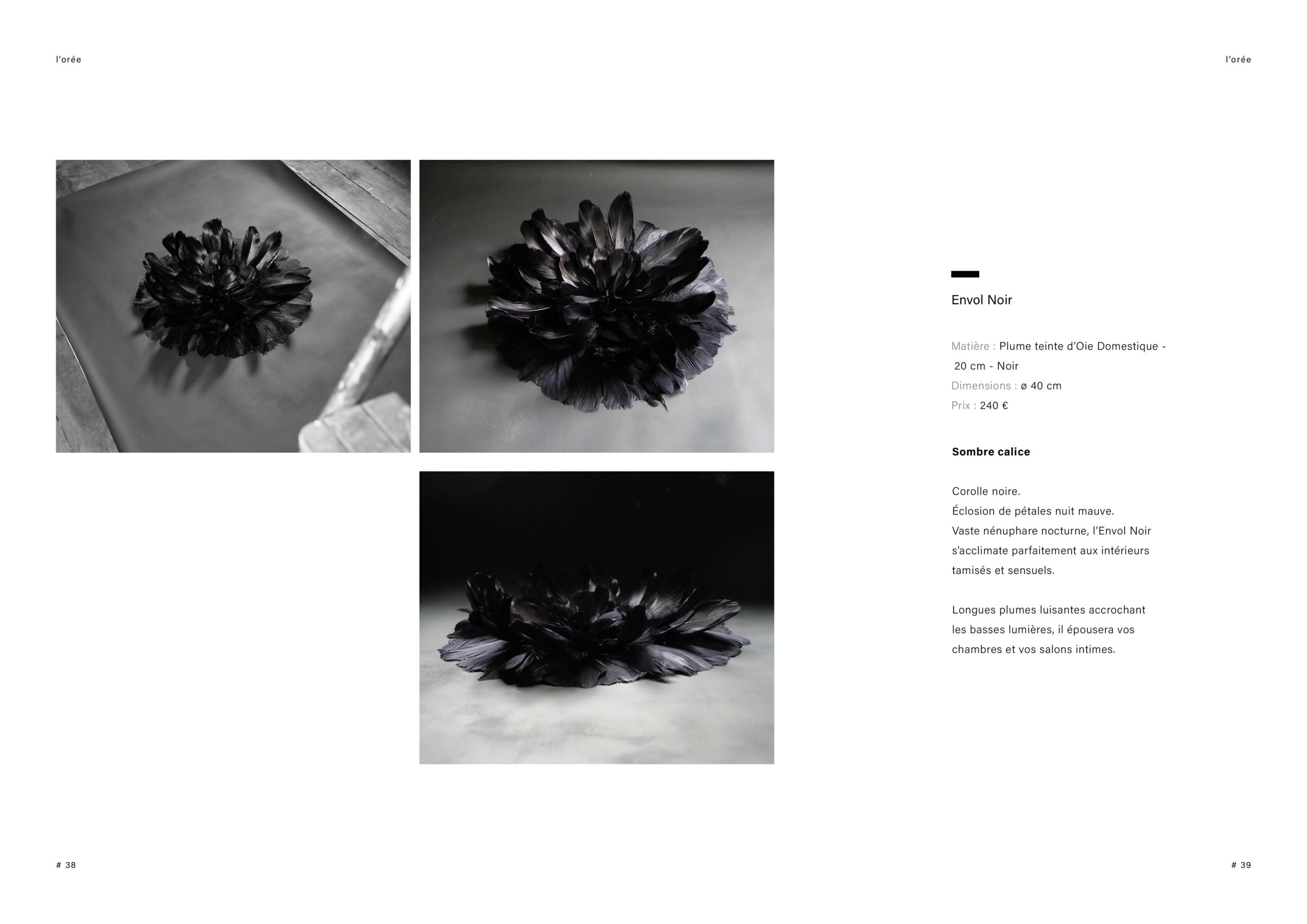 Catalogue creation_WEB20