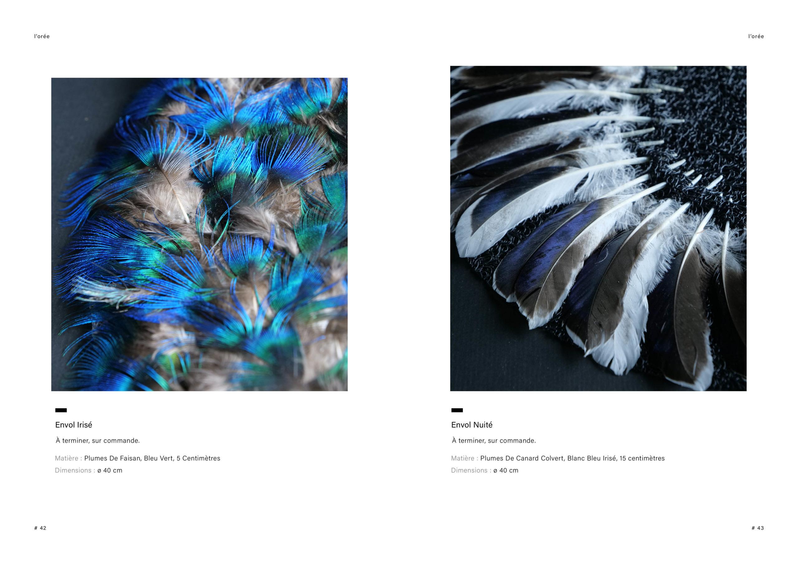 Catalogue creation_WEB22