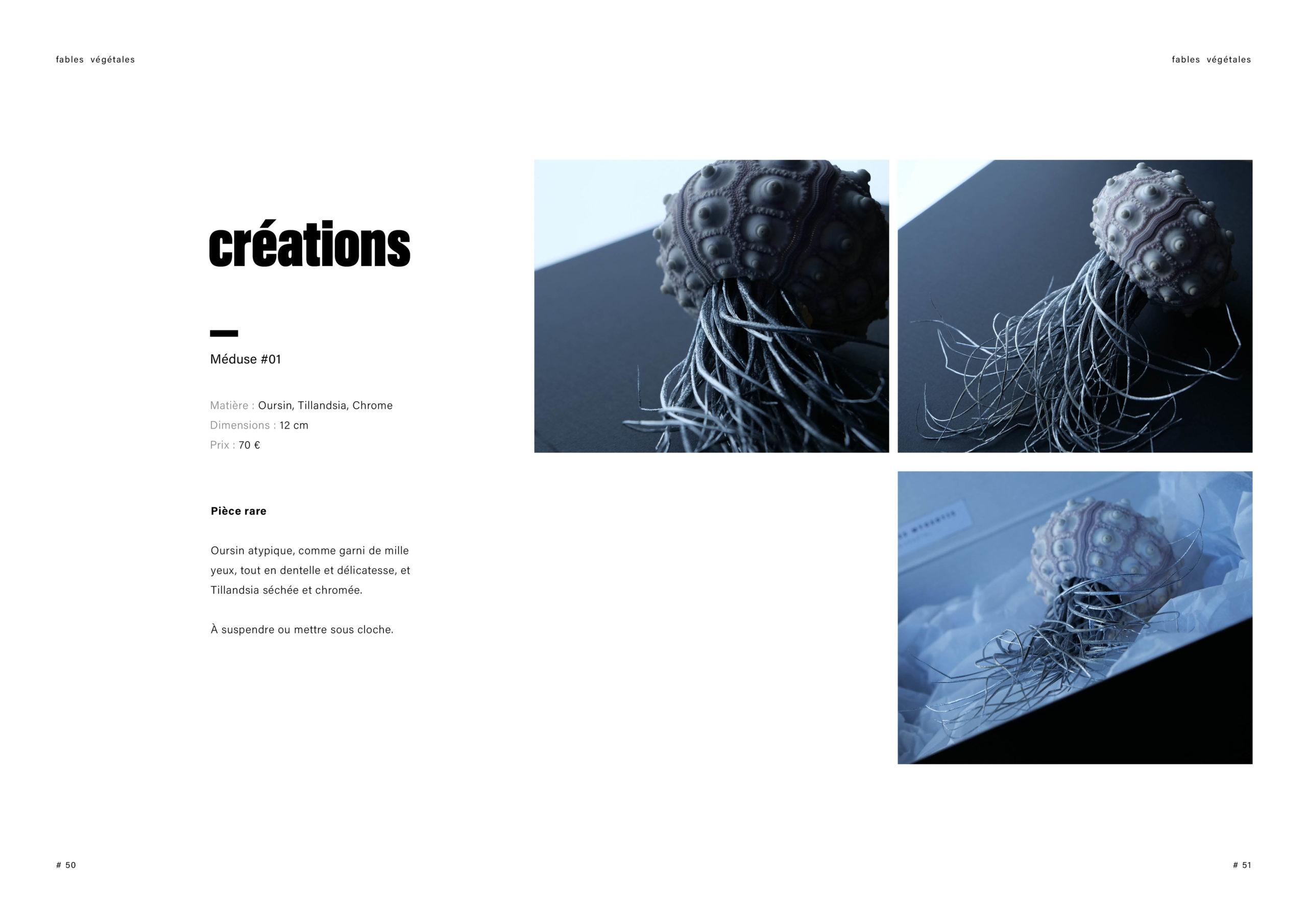 Catalogue creation_WEB26