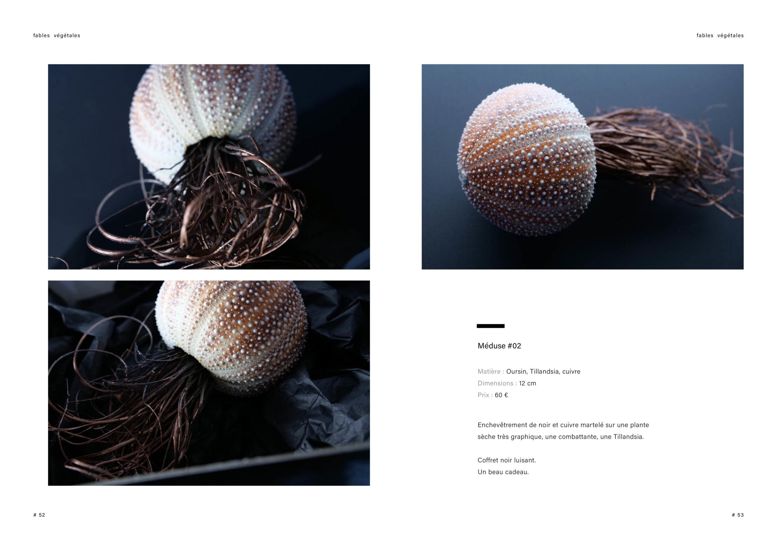 Catalogue creation_WEB27
