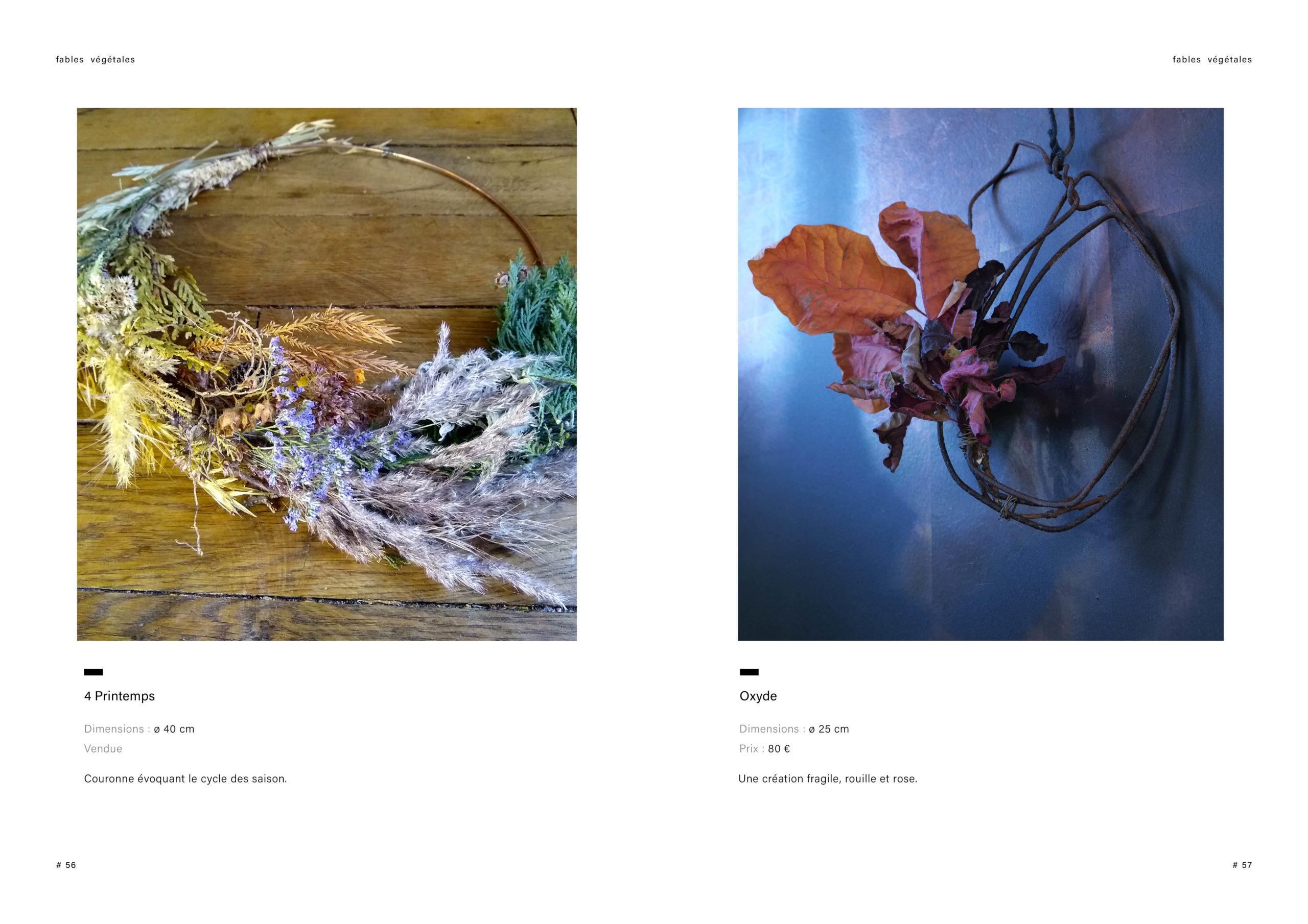 Catalogue creation_WEB29