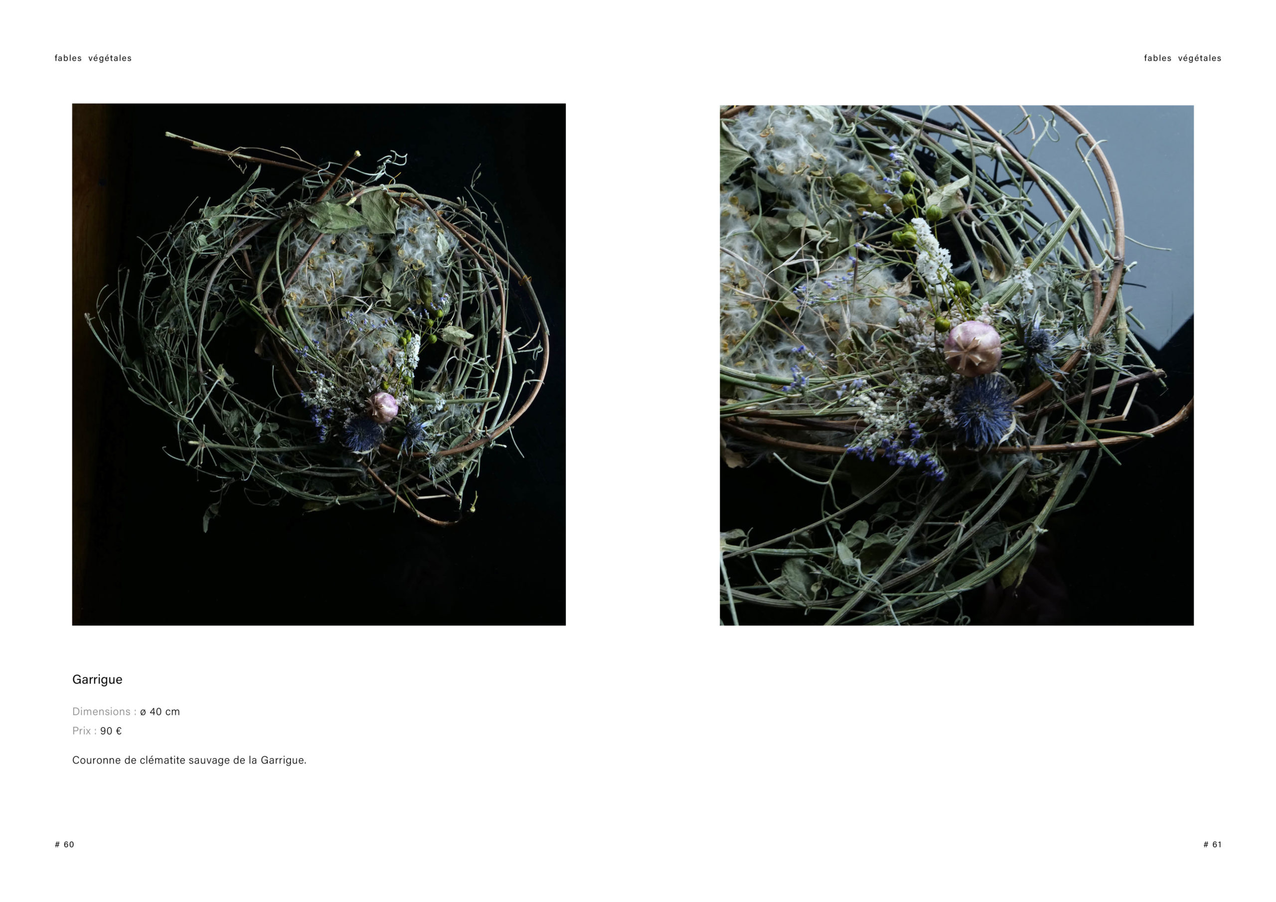 Catalogue creation_WEB31