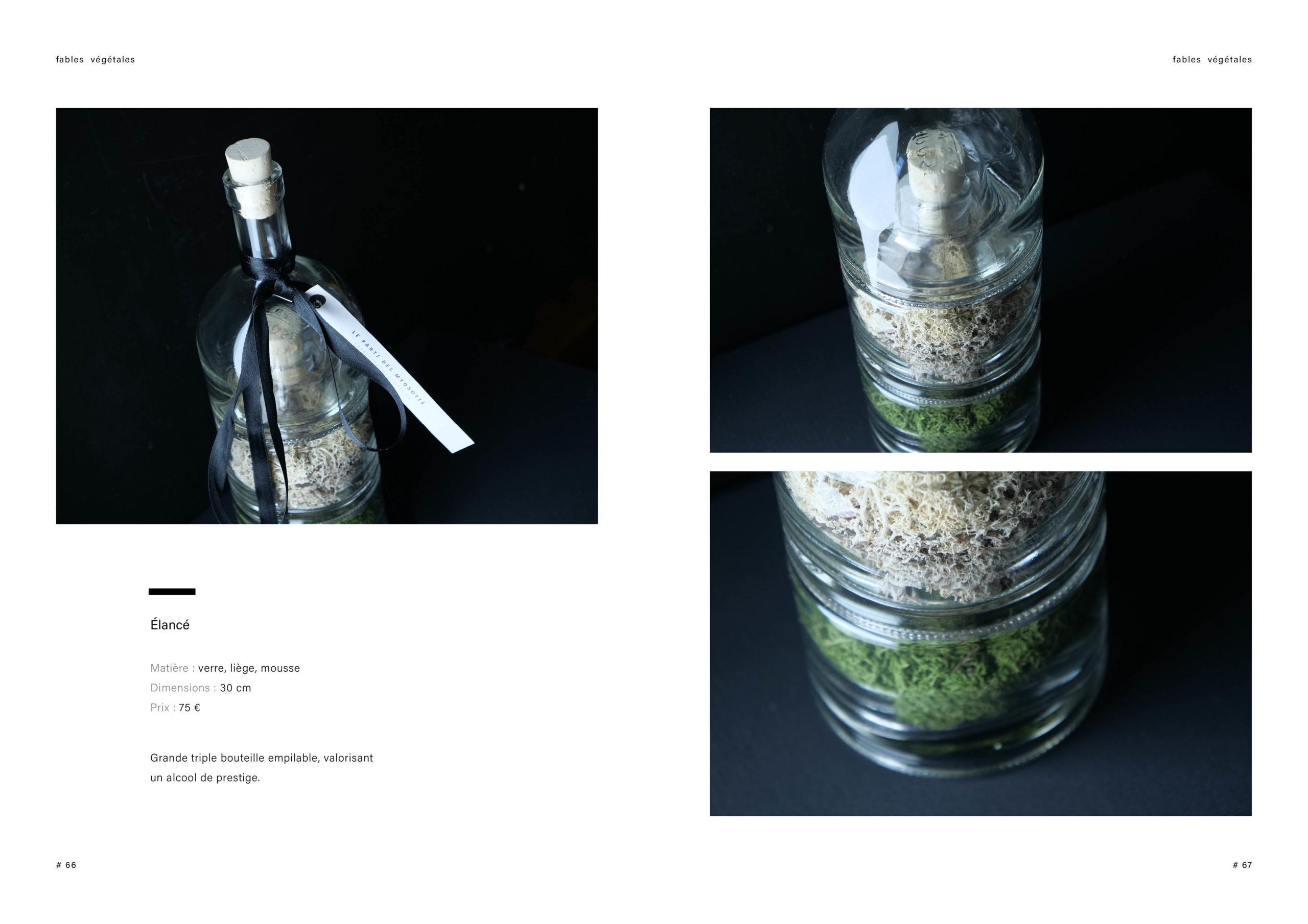 Catalogue creation_WEB34