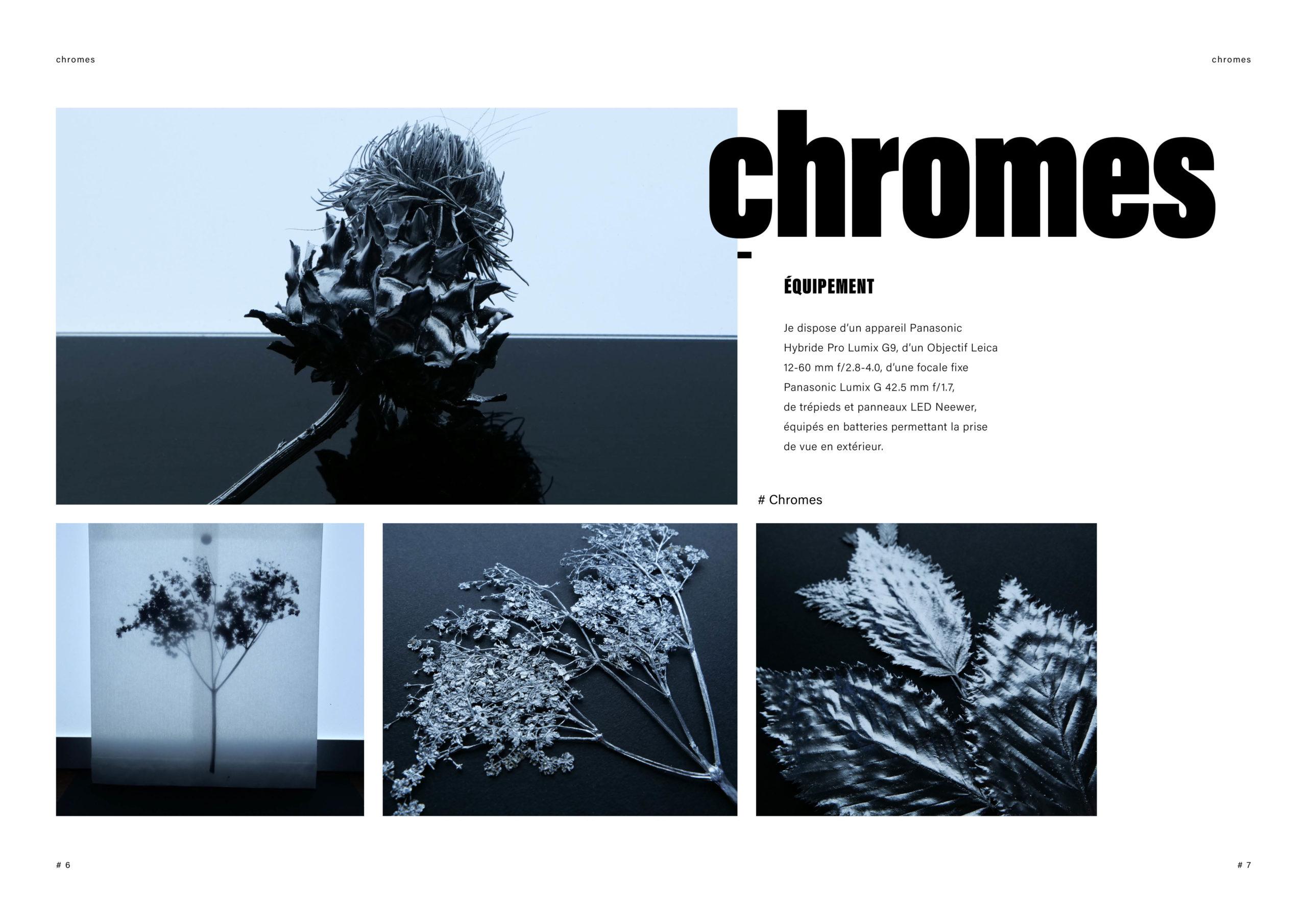 Catalogue creation_WEB4