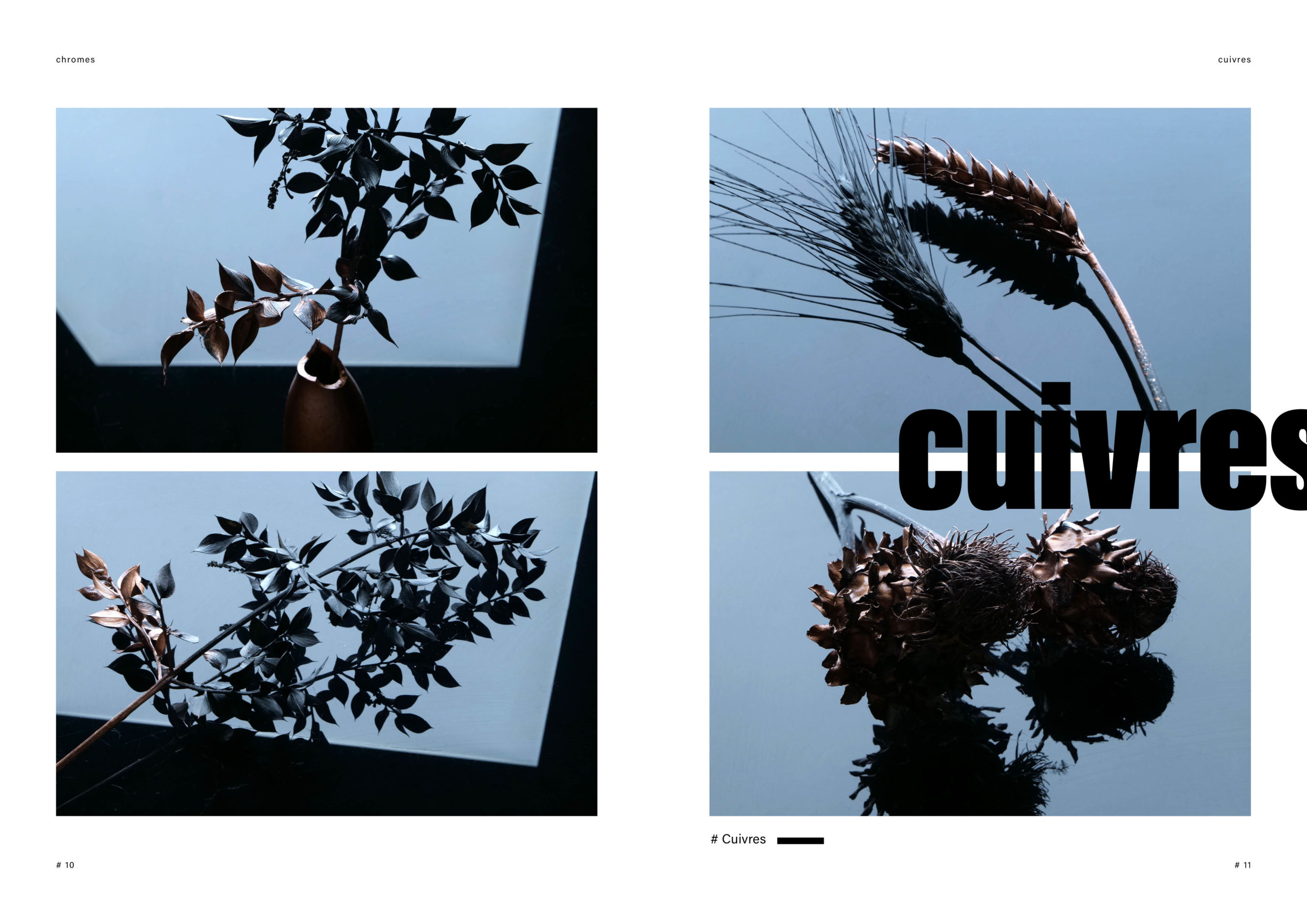 Catalogue creation_WEB6